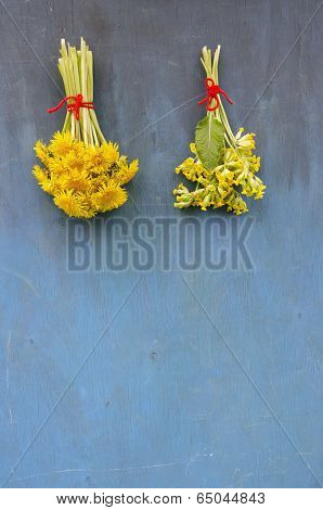 Spring Dandelion And Cowslip Flower Bunch On Old Wooden Wall