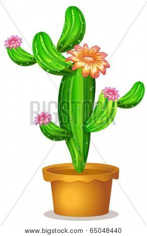 Illustration of a pot with a flowering cactus plant on a white background