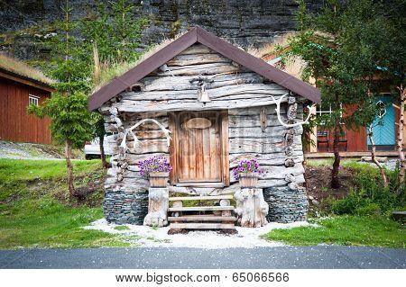 Native Scandinavian House