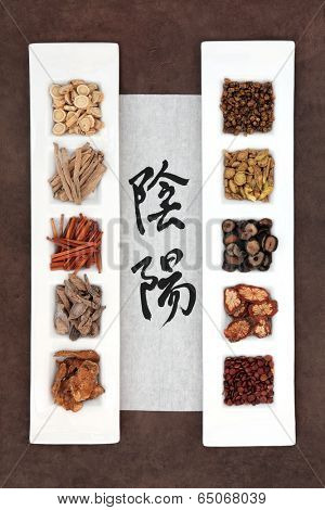 Chinese herbal medicine with yin and yang calligraphy script on rice paper. Translation reads as yin yang.