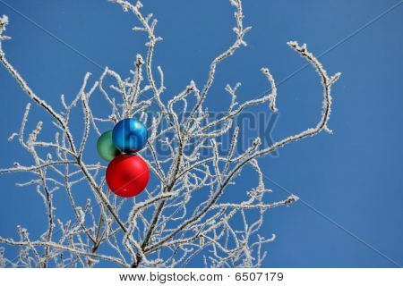 Three Balls On Branch
