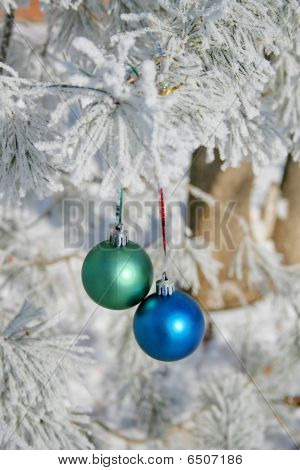 Two Balls On Branch