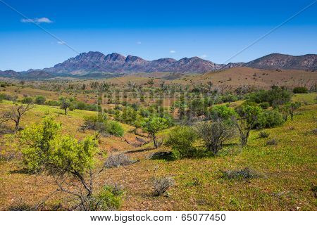 The Flinders Ranges, South Australia
