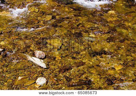 Golden stream detail
