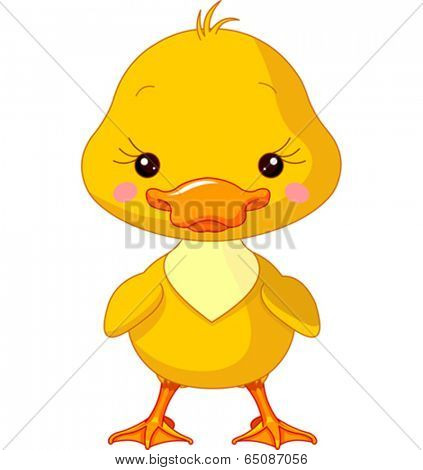 Farm animals. Illustration of cute Duck