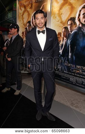 LOS ANGELES - AUG 12:  Godfrey Gao at the