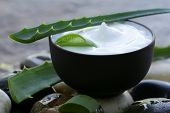 picture of body-lotion  - cosmetic cream lotion with natural green fresh aloe vera - JPG