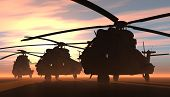 foto of military helicopter  - A group of military helicopters - JPG