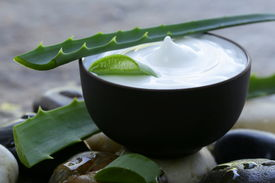 stock photo of body-lotion  - cosmetic cream lotion with natural green fresh aloe vera - JPG