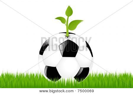 Soccer Ball With Sprout