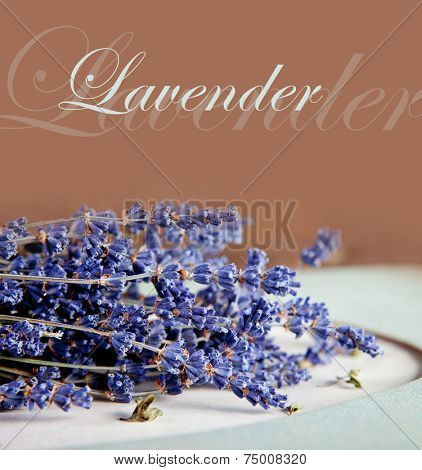 Lavender flowers on vintage background