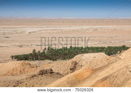 Mountain Oasis Tamerza In Tunisia Near The Border With Algeria.