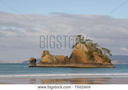 Pungpunga Island New Zealand