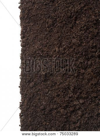 vertical soil or dirt section isolated on white background
