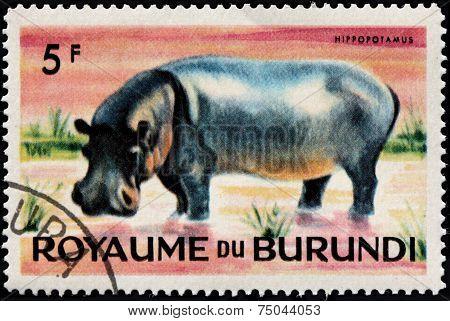 Hippo Stamp