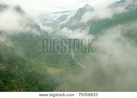 Tara River Canyon surrounded by clouds and morning mist, Serbia