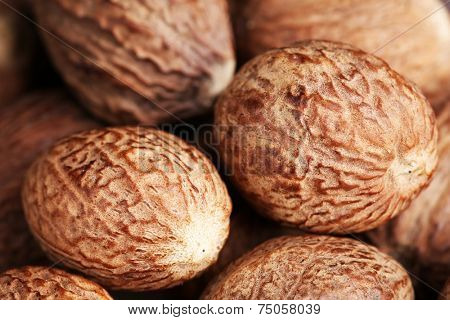 Nutmegs close up