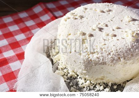 Cottage cheese on gauze on fabric background