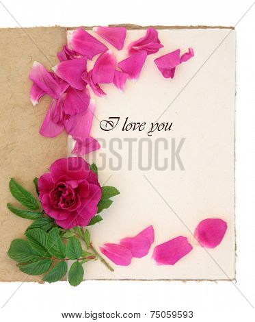 Old vintage notebook with I love you phrase, red rose and petals over white background. Rosa rugosa.