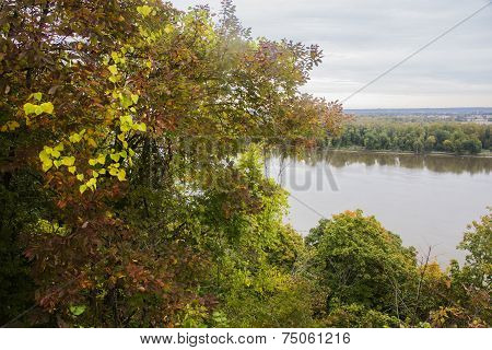 autumn leaves above Mississippi River