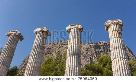 Columns In Athena Temple