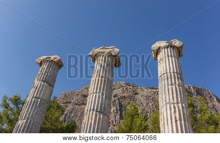 Columns Of Temple Athena
