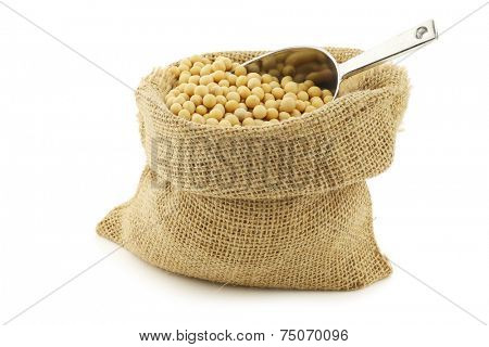 soy beans in a burlap bag with an aluminum scoop on a white background