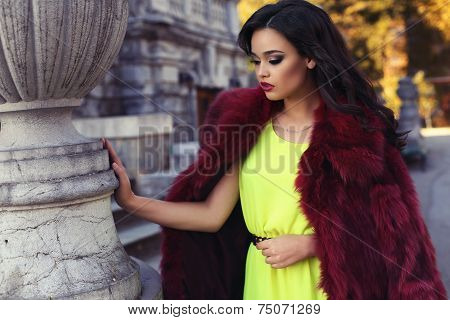Beautiful Woman With Dark Hair In Luxurious Fashion Fur Coat