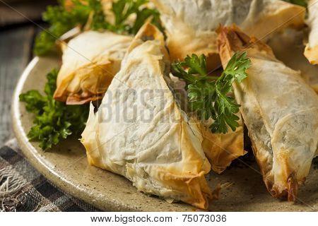 Homemade Greek Spanakopita Pastry