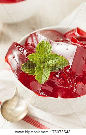 Homemade Red Cherry Gelatin Dessert