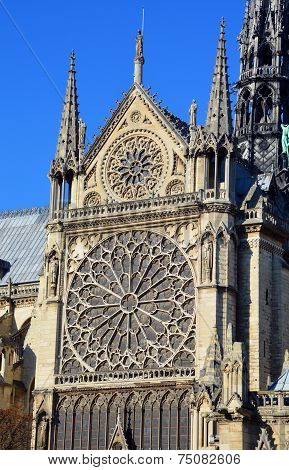 The Notre Dame cathedral of Paris details