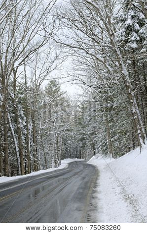 Icy Road Through Snow Covered Woods