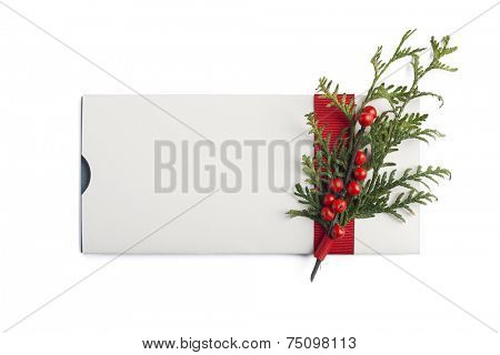 Christmas giftcard isolated with mistletoe and ribbon