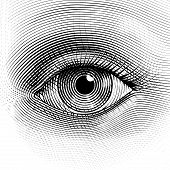stock photo of  eyes  - Vector human eye in engraved style - JPG