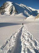 Постер, плакат: Climber making tracks in fresh snow crossing the Col Du Midi