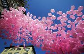 image of sympathy  - In memory of women who died of breast cancer and a sign of sympathy to their relatives were released hundreds of