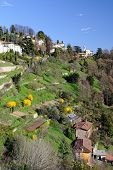 View Over Terraced Gardens To San Vigilio, Lombardy, Italy, Europe. poster