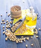 picture of pine nut  - pine nuts and pine nut oil in the bottle - JPG