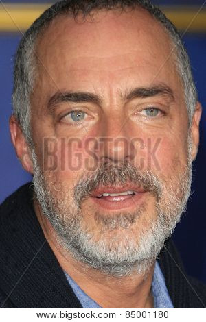 LOS ANGELES - MAR 1:  Titus Welliver at the