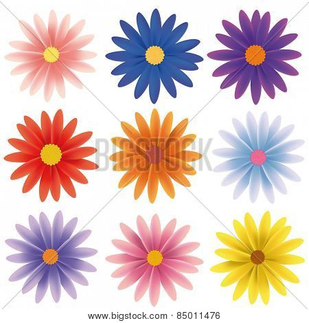 Isolated Vector Flower Collection. Set of nine gerber daisy flowers in various colors isolated on white vector illustration.