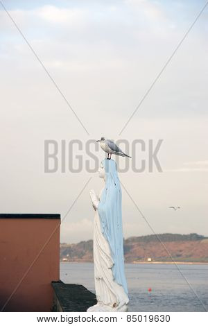 Virgin Mary Statue With A Seagull