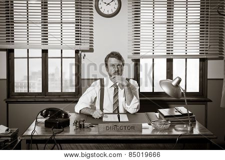 Director Working At Office Desk