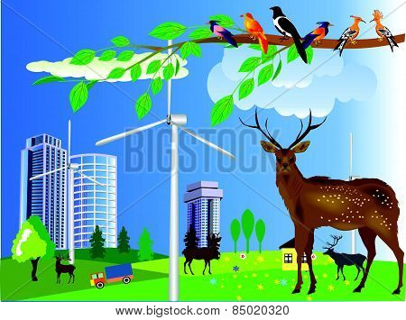 Urban and village landscape. Ecology, environmental protection wild animals