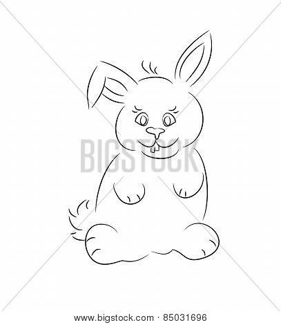 Contour Of Small Rabbit