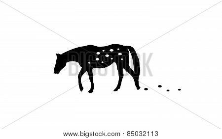 Dalmatine Horse