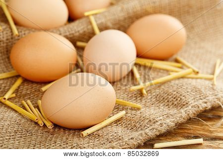 Homegrown Eggs