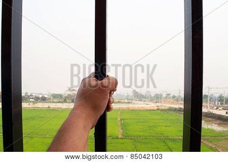 Freedom outside bars