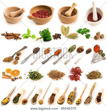 Collage of photos of different spices on spoons and dishes on a white background
