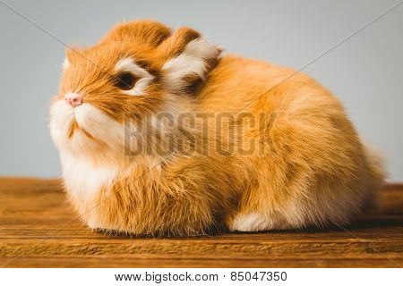 Ginger bunny rabbit on grey background