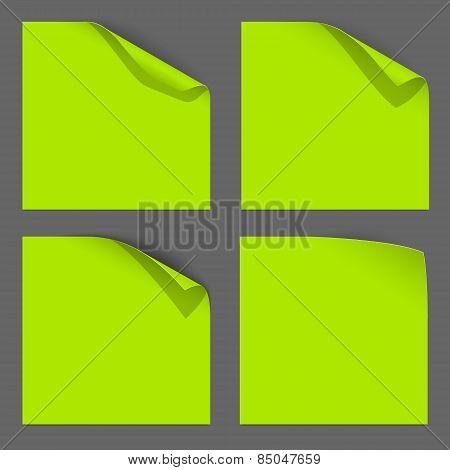 Green Paper Curled Corner